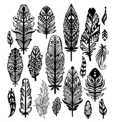 Tribal ethnic feathers vector
