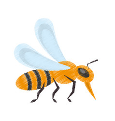 Drawing bee insect flower pollen vector
