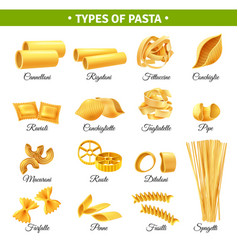 Pasta types infographics vector