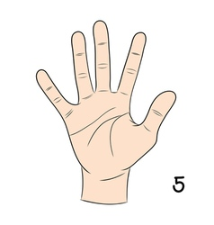 Sign language number 5 vector