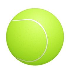 Tennis Ball vector image