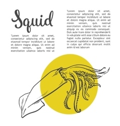 solated squid with yellow spots vector image
