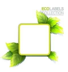 Green Eco Label vector image vector image