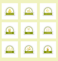 label icon on design sticker collection vector image