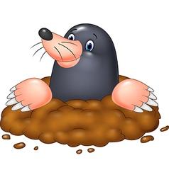 Cartoon funny mole vector