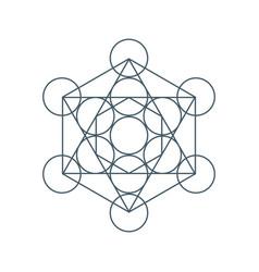 flower of life sacred geometry symbol of harmony vector image