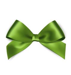 Shiny green satin ribbon on white background vector image