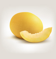 Yellow honeydew melon on white background vector