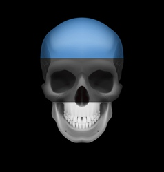 Estonian flag skull vector