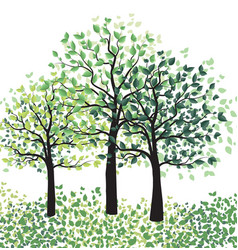 Green trees with leaves vector