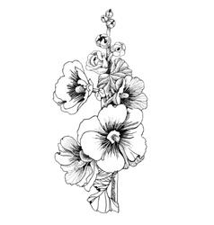 Beautiful painted flower sketch vector