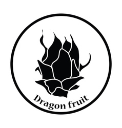 Icon of Dragon fruit vector image