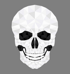 skull head low poly vector image
