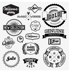 Set of vintage bagdes labels and stamps vector