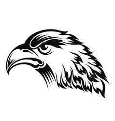 Realistic eagle head vector