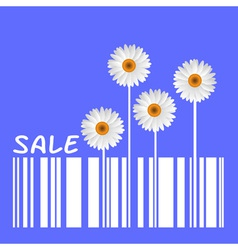 Camomiles and barcode vector image