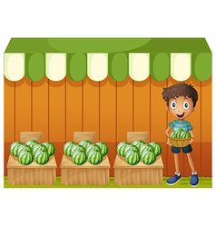 A boy holding a basket of watermelons vector image vector image
