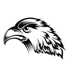 Realistic eagle head vector image vector image