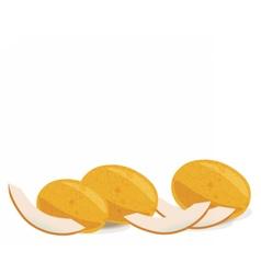 Yellow Melon fruits vector image vector image