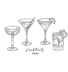 Hand drawn set of alcoholic cocktails vector