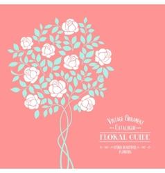 Rose bush vector