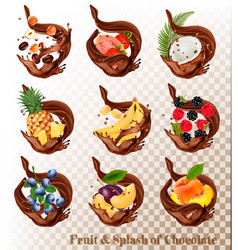 Big collection of fruit in a chocolate splash vector