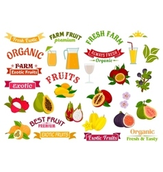 Fruit juice signs juicy fresh fruits icons set vector