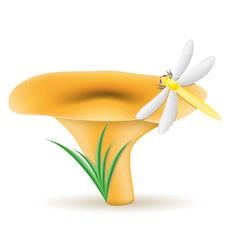 mushroom chanterelle vector image vector image