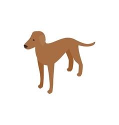 Ridgeback dog icon isometric 3d style vector image