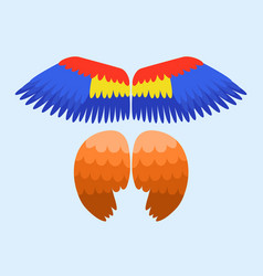 Wings isolated animal blue feather pinion bird vector