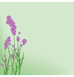 Violet Small Flowers vector image