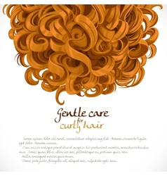 Curled hair background vector