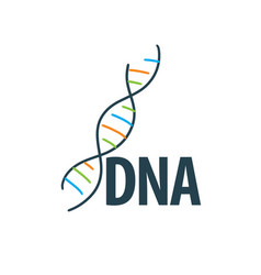 logo dna vector image