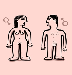 Human nude couple vector
