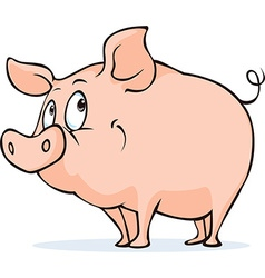 Cute pig isolated on white background vector