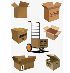 box a0106 vector image