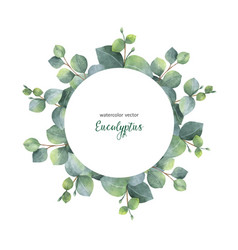 watercolor wreath with silver dollar vector image vector image