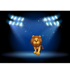 A lion at the center of the stage with spotlights vector image vector image