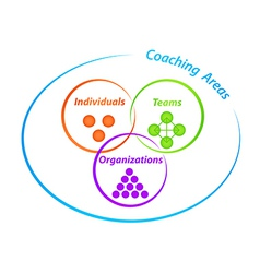 Coaching Areas Diagram vector image