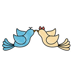 couple of doves icon vector image