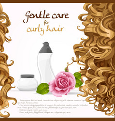Curled hair care background vector image vector image