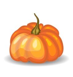 Glossy Orange Pumpkin vector image vector image