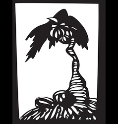 Palm tree with coconuts isolated on white vector