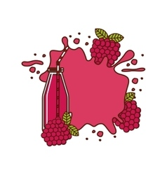 Smothie fruit design vector