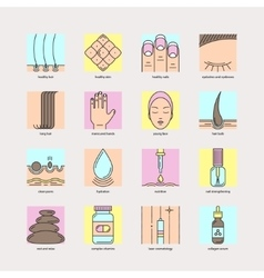 Set of color line icons of hair skin and nails vector