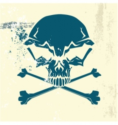 stylized human skull vector image vector image