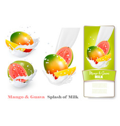 Mango and guava in milk splashes vector