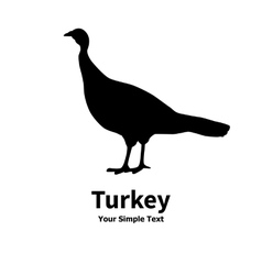 Poultry turkey vector
