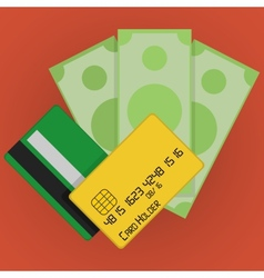 Credit Cards and Money Icon vector image