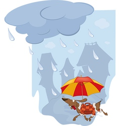 The rate and umbrella vector image